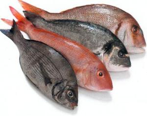 pescado fresco, pescado, pescados