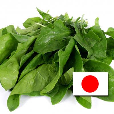 Alimentos procedentes de Japón